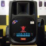 loa-keo-karaoke-bluetooth-feiyang-blt-f698-h